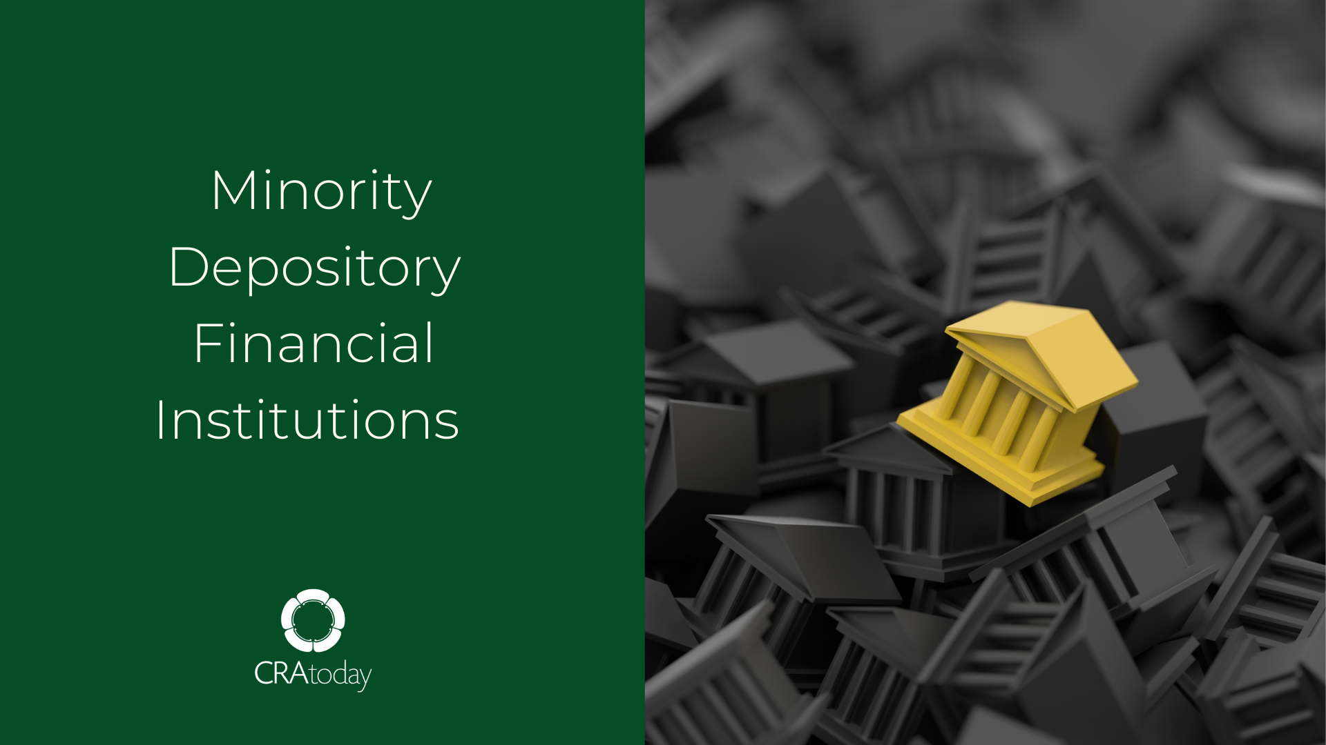 Minority Depository Financial Institutions